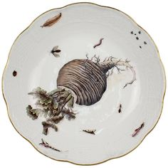 Exceptional Botanical Antique Meissen Porcelain Bowl with a Turnip and Insects | From a unique collection of antique and modern dinner plates at https://www.1stdibs.com/furniture/dining-entertaining/dinner-plates/