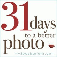 Blog offers 31 tips to better photos. Good for beginner dslr owners. Also includes some photoshop tips.