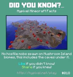 Minecraft did you know! #018