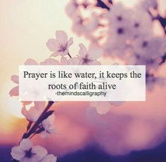 """""""Prayer is like water, it keeps the roots of faith alive. Allah Quotes, Muslim Quotes, Quran Quotes, Religious Quotes, Qoutes, Islam Hadith, Allah Islam, Islam Muslim, Alhamdulillah"""