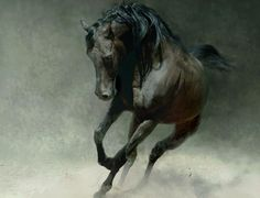 Wild horses - (#79754) - High Quality and Resolution Wallpapers on ...