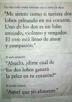 Léanlo con atención!!! #Lobo ...