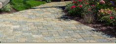 Pavers for our back yard.  I love this pattern and color combo!