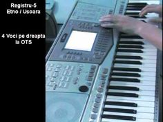 Demo - program styluri Yamaha PSR 2100 /1100.    Pachet Yamaha PSR 2100/1100  Program complet pentru Yamaha PSR 2100 cu ritmuri/tonuri si registri setati.  Programul pentru discheta flopy contine 64 de style-uri pentru:  -muzica populara (hore, sarbe, geampara, banat si ardeal)  -manele (manele live, orientale si rumba)  -muzica usoara    Bonus:  -50 de s...