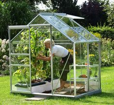 Petite serre de jardin Leroy MerlinSerre EGT Venus 2500 en aluminium et verre horticole, 2.528 m², l.193 x P.131 x H.124 cm, une lucarne, 349 €, Leroy Merlin.