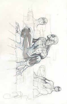bear1na:Spider-Man sketch by Simone Bianchi *