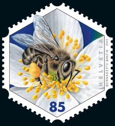 Switzerland, 2011, first hexagonal stamp with honey bee by beatriz