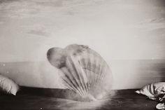 Venus goes Retrograde July to September Via Mystic Mama Monochrome Photography, Source Of Inspiration, Great Photos, Venus, Artwork, Mystic, Photography Tricks, Consciousness, Pagan