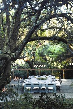 | P | Dining Alfresco under the trees. Table setting for 16. Use two 4' x 8' sheets of plywood for table covered with a linen table cloth or 4 x 4yd lengths of white sunbrella fabric.