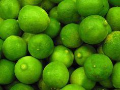 Limette / Lime Fruit + Zitrusfrüchte - Zitruspflanzen / Citrus
