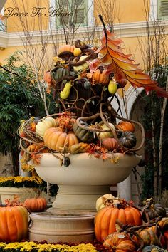 Any pumpkins and other gourds build Fall ambiance within a rustic container such as a whiskey barrel planter or barrel....#coopersmithandson #homedecor #gardening