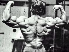7944266d676ab9 31 Arnold-Approved Training Tips