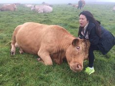 http://ift.tt/2hyWPlY sister getting headbutted by a cow