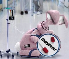 energizer bunny gif   Guests can not see images in the messages. Please register in the ...