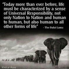 Today more than every before, life must be characterized by a sense of Universal Responsibility, not only Nation to Nation and human to human, but also human to all other forms of life. ~the Dalai Lama