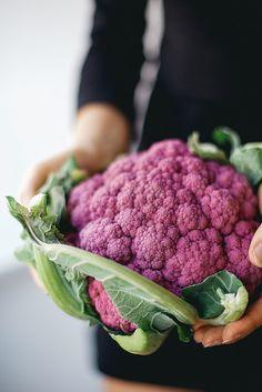 Purple Cauliflower | by renee_kemps