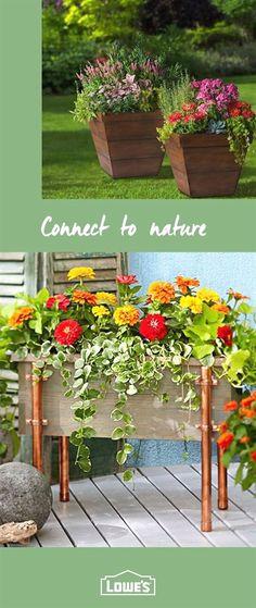 1207906 Ocotillo fence hides air conditioner [Fouquieria splendens ...
