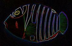 Humuhumunukunukuapuaa Photograph  - Humuhumunukunukuapuaa Fine Art Print ~ #hawaii #fishes #hawaiianfish #abstract #iphoneography :)