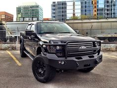Fab Fours Premium Grille Guard Winch Bumper on Ford.