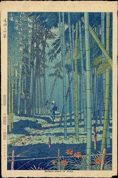 Bamboo Grove Of Saga