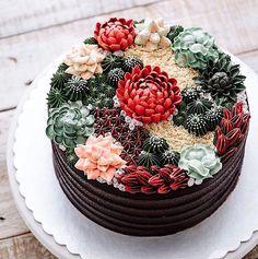 succulent-terrarium-cakes-cupcakes-ivenoven-5-58da6e0413367__700