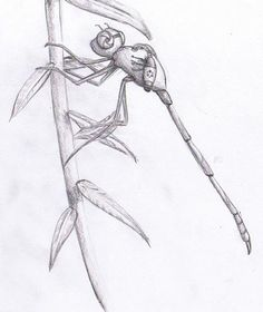 DSG 1407: Sci-Fi • INSECT-LIKE ROBOT HAS BOTH MECHANICAL + ORGANIC ...