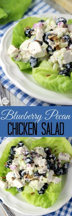 You Have Meals Poisoning More Normally Than You're Thinking That Blueberry Pecan Chicken Salad By Renee's Kitchen Adventures - Easy Recipe For A Creamy Chicken Salad Made With Plump, Sweet Blueberries And Crunchy Pecans Pecan Chicken Salads, Chicken Recipes, Blueberry Recipes, Blueberry Chicken, Tasty, Yummy Food, How To Make Salad, Summer Salads, Easy Salads