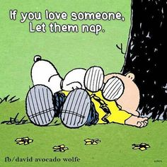 Naps …HiLaRiouS ,,,,so us, Happy Flowers, I'll let you nap, nap all you want …told you, I'd make all your dreams come true because I am Lisa Keegan and thats what I do…. lol like it or not LOL LoL lol lol