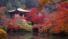 Desfrute em um Jardim de Paraíso Oriental | Ideias Designer de Interior