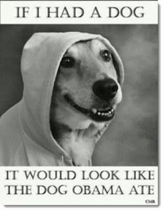 obama-dog-meat-would-look-like-the-dog-obama-ate-spoof