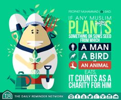 Prophet Muhammad (peace be upon him) said:   If any Muslim plants something or sows seed from which a man, a bird or an animal eats, it counts as a charity for him.  [Reference: Sahih al-Bukhari]