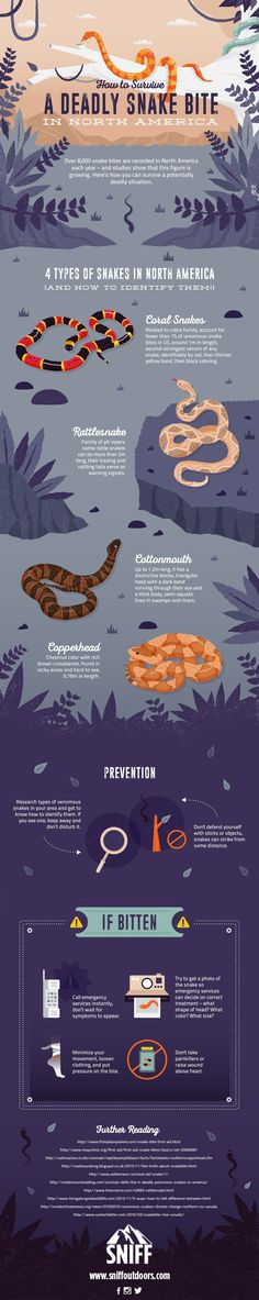 How to Identify Venomous Snakes and Treat Snake Bites - Treat every snake bite as if it's from a venomous snake. Get professional emergency treatment as quickly as possible. But if SHTF, or you are in the middle of the wilderness, you may not have that luxury... so what do you do?