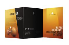 Brochure design Hyderabad,flyer designers hyderabad,flyer hosting hyderabad, logo designing and printingservices