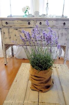 Lovely #lavender from Tumblr