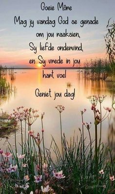 Good Morning Prayer, Funny Good Morning Quotes, Good Morning Inspirational Quotes, Good Night Quotes, Good Morning Good Night, Morning Qoutes, Sunday Quotes, Nice Quotes, Morning Messages