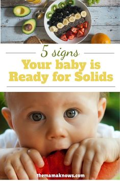 Learn the 5 biological cues your baby will give you when they are ready to move on from breastmilk or formula 6 Month Olds, Baby Led Weaning, Baby Food Recipes, Breastfeeding, Signs, Learning, Pregnancy, Charlotte, Recipes For Baby Food