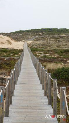 Guincho beach dunes in Cascais - Portugal Portugal, Cascais, Fishing Villages, Lisbon, Railroad Tracks, Stairs, Beach, Madeira, Ladders