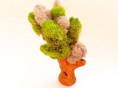 Miniature Tree Fairy Garden Tree Dollhouse by EnchantedHomes