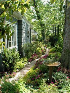 Gardening for your Backyard