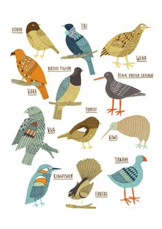 Kate Sutton: Birds of New Zealand giclee print Vogel Illustration, New Zealand Art, Nz Art, Maori Art, Kiwiana, Bird Drawings, Illustrations, Bird Art, Bird Feathers