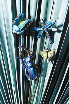 Entomology Knob #anthropologie .. they have such interesting knobs....  makes me want to look into crafts to use them