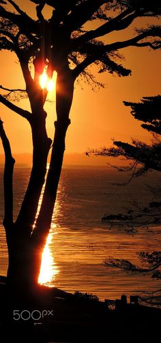 Beautiful Sunset at Lover's Point, Pacific Grove, California | by Dina Adornetto