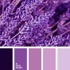 color rosa melocotón, colores violeta y rosado, morado y violeta claro, paletas de diseño para casa, púrpura y rosado, rosado suave, rosado y violeta, selección de colores para el diseño, tonos rosados, tonos violetas, violeta suave, violeta y rosado.