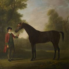 Sawrey Gilpin - Portrait of a horse Animal Painter, Royal Collection Trust, Horse Portrait, Old Paintings, Historical Romance, Old Master, Horse Art, Old Things, My Arts