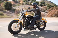 Harley-Davidson XL Sportster 1200 Custom 2013 - 2