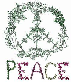 paz interior - Pesquisa Google