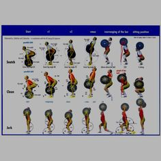 Olympic Lifts Chart