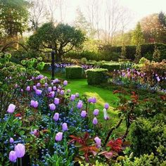 Paradise Found coffee table book shows the world's most beautiful gardens, from English gardens and romantic rose gardens to enchanting nature gardens. The evocative photographs and excellent plant portraits by Clive Nichols, a master of using light to create mood, are equally moving and inspiring. Classic garden poems and quotes accompany the reader through this volume on a visual stroll through nature. #englishgardens #rosegardening