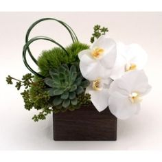 Peaceful designer flower and plant arrangement with orchids, dianthus, elegant succulents. Perfect gift for business or personal occasions. NYC delivery.