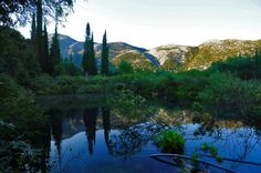 Local tip: Hike the path from Pirgi village and discover an idyllic rural scenery in Avithos lake, lying in the foothills of Mt Ainos.